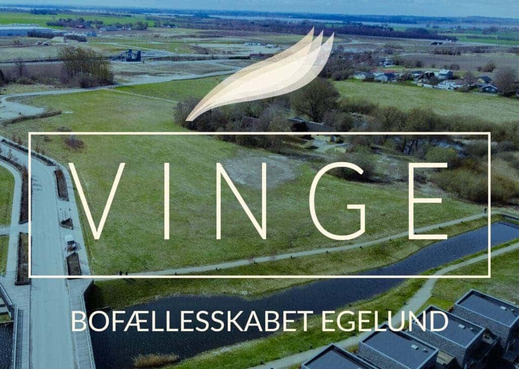 vinge-billede